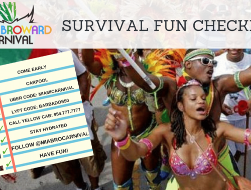 MIAMI CARNIVAL SURVIVAL FUN KIT!