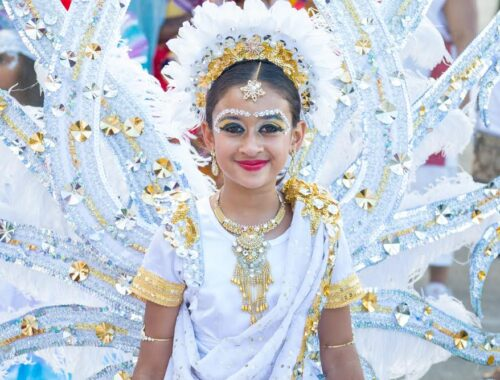 Miami Carnival Pictures